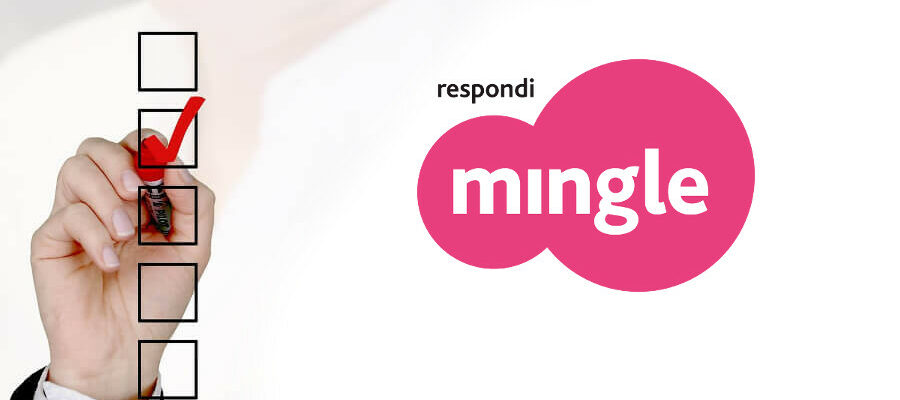 What are the different types of surveys offered on Mingle